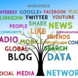 linki do blogów